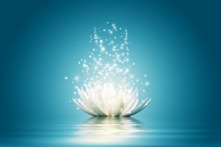 Photo pour Magic Lotus flower - image libre de droit