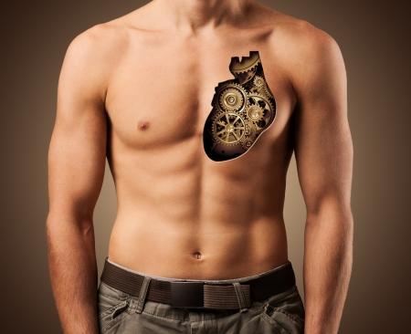 Beautiful male torso  Healthy human heart
