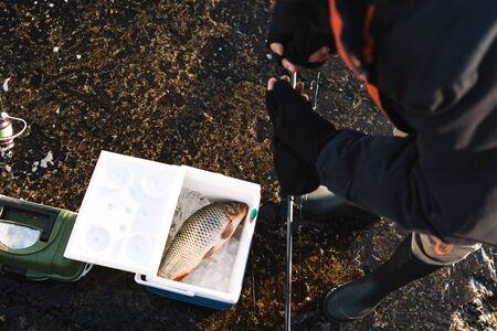 Photo pour Close up of a fisherman putting caught fish in the cooler - image libre de droit