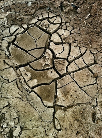 Cracks in the ground