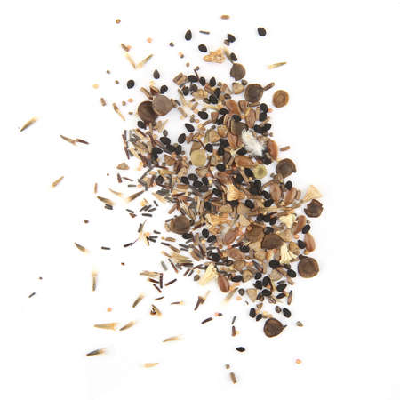 Photo pour Variuos flowers seeds isolated on white background. Pile dry flowers seeds, top view. - image libre de droit