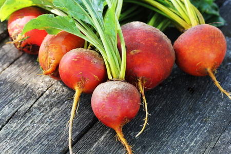 Foto de Raw organic golden beets on wooden background - Imagen libre de derechos