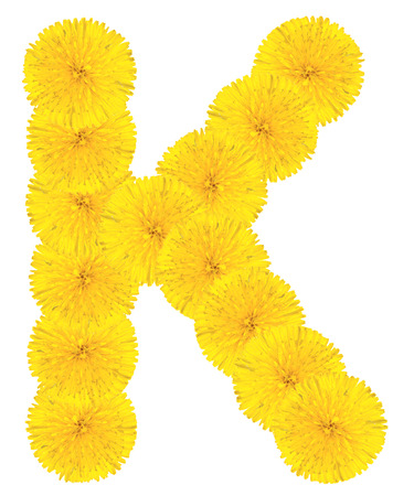 Letter K made from dandelion flowers isolated on white background