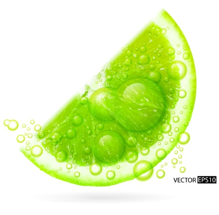 Green lime with water splash isolated on white background   illustration
