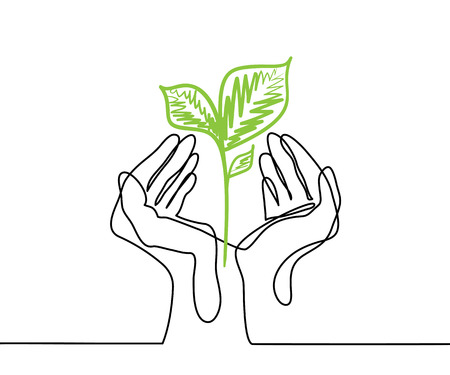 Illustration pour Hands holds a living green plant seedling. Continuous line drawing. Vector illustration - image libre de droit