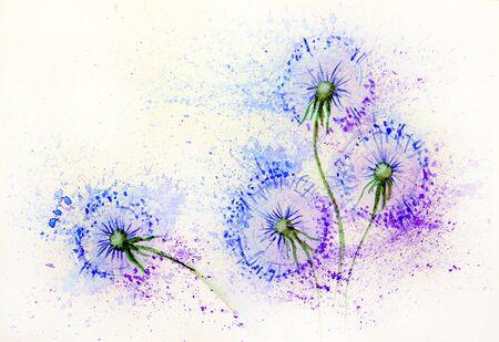 Photo pour Dandelion flowers in the wind. - image libre de droit