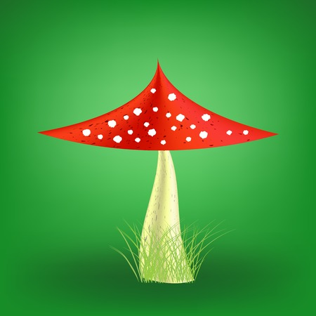Poisonous Mushroom on Soft Green Background. Fly Agaric