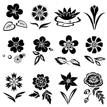 Illustration pour Flower set. Nasturtium, primula, lily, viola, anemone, crocus, cornflower, poppy, orchid. Floral black symbols with leaves. May be used in cuisine. Vector isolated - image libre de droit