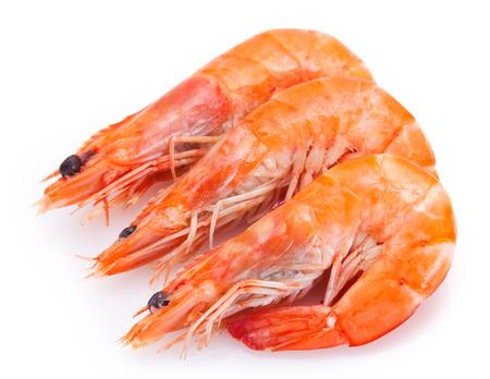 Photo pour cooked shrimp isolated on white background - image libre de droit