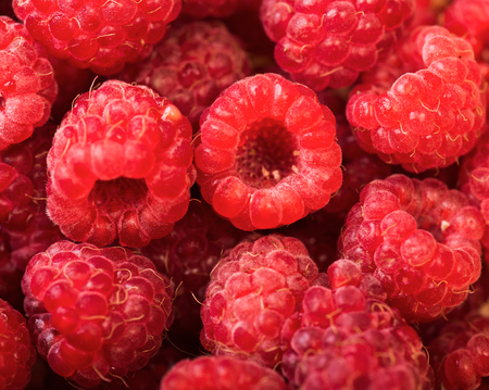Raspberry fruit background, red berry