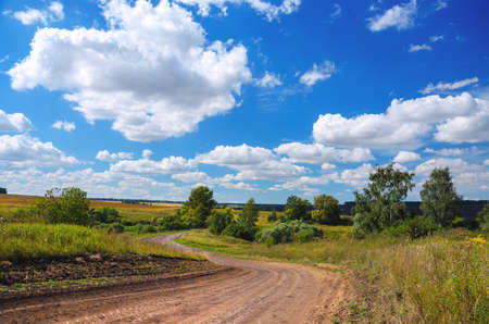 Photo pour Sunny summer rural landscape with dirt country road and green trees. - image libre de droit