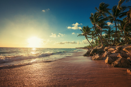 Photo pour Landscape of paradise tropical island beach, sunrise shot - image libre de droit