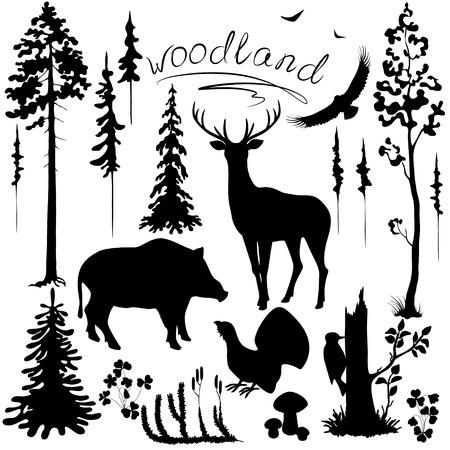 Photo pour Set of silhouettes of woodland plants and animals. - image libre de droit