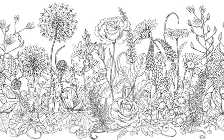 Illustration pour Hand drawn seamless line pattern with wildflowers. Black and white doodle wild flowers and grass for coloring. Monochrome floral elements for decoration. Vector sketch. - image libre de droit