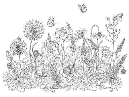 Ilustración de Hand drawn line illustration with wildflowers and insects. Black and white doodle wild flowers, bees and butterflies for coloring. Floral elements for decoration. Vector sketch. - Imagen libre de derechos