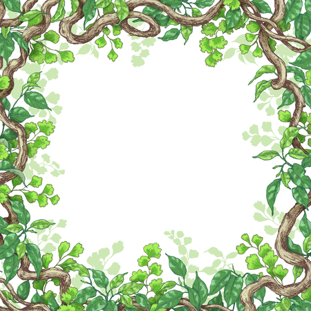 Ilustración de Hand drawn branches and leaves of tropical plants. Square frame made with green fern, ficus   and liana trunks.  Space for text. Vector sketch. - Imagen libre de derechos