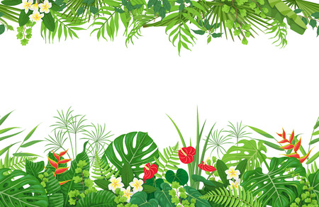 Ilustración de Horizontal floral seamless pattern made with colorful leaves and flowers of tropical plants on white background. Tropic rainforest foliage border. Vector flat illustration. - Imagen libre de derechos