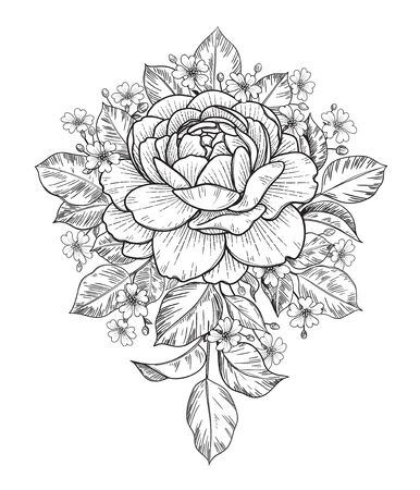 Illustration pour Hand drawn rose and small gypsophila flowers bunch isolated on white. Vector monochrome elegant floral composition in vintage style, t-shirt, tattoo design, coloring page, wedding decoration. - image libre de droit