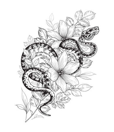 Illustration pour Hand drawn twisted snake among flowers isolated on white. Vector monochrome spotted garden tree boa and wildflowers. Floral illustration in vintage style, t-shirt design, tattoo art, coloring page. - image libre de droit