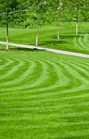 Photo pour huge green lawn - image libre de droit