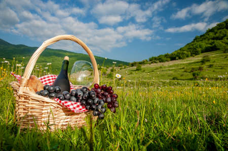 Hiking picnics in the mountains in summer or spring. A picnic basket with wine, fruits, grapes and bread stands on a meadow in the green grass. The concept of secluded outdoor recreation.