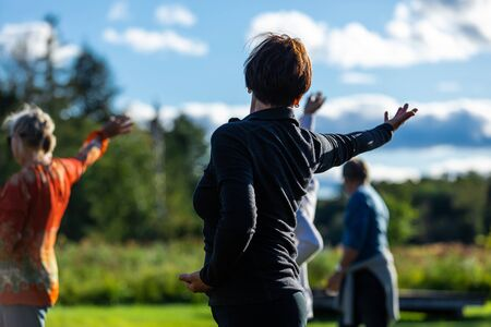 Photo pour Backside and selective focus photo of adult female posing a yoga position with a group of other people in a yoga and mindfulness session - image libre de droit