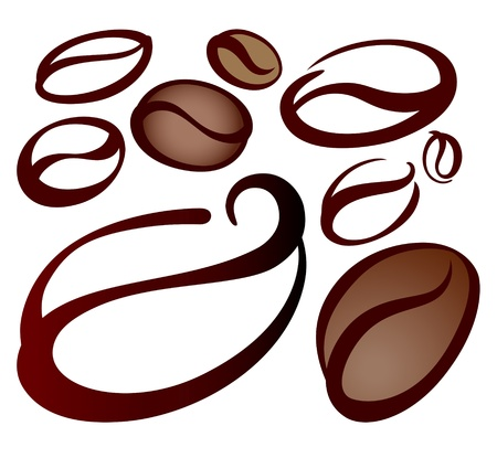 coffee beans on white