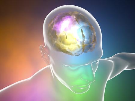 Photo pour Brain neurons synapse, anatomy body, head profile, disease - image libre de droit