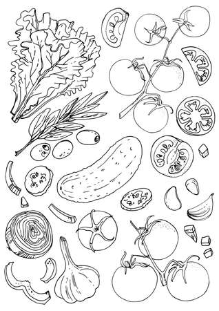 Illustration pour Set of vegetables. Fresh food. Lettuce, tomatoes, cucumber, olives, garlic line drawn on a white background. Vector illustration. Coloring for adults - image libre de droit