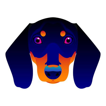 Illustration pour Abstract dachshund dog head isolated on white. Graphic cartoon dachshund dog portrait painted in imaginary colors for design card, invitation, banner, book, scrapbook, t-shirt, poster etc. - image libre de droit