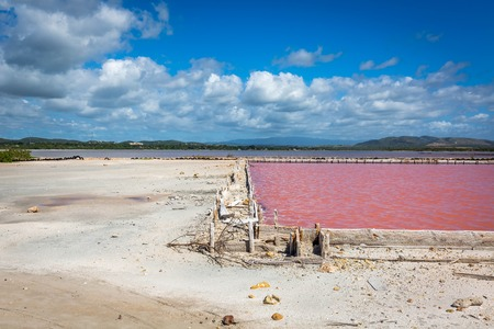 Red salt production in Puerto Rico lake pool