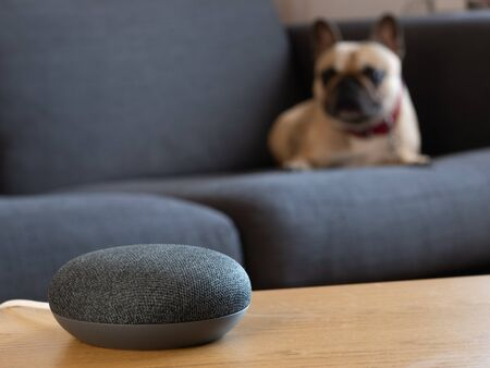 Photo pour smart home speaker device voice activated with dog in living room lounge - image libre de droit