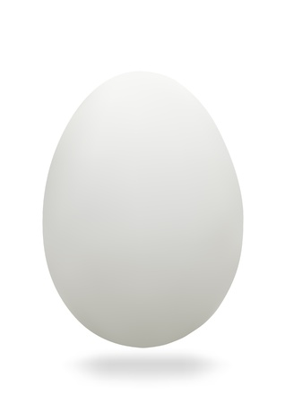 White chicken eggs on a white background