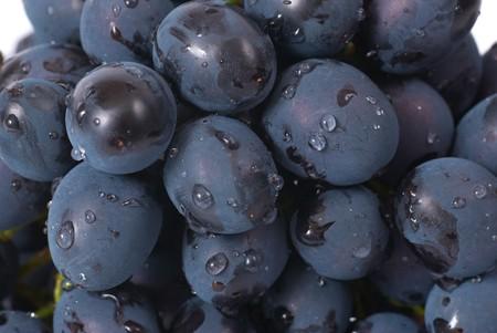 Foto für Red grapes with water drops. Studio macro shot - Lizenzfreies Bild