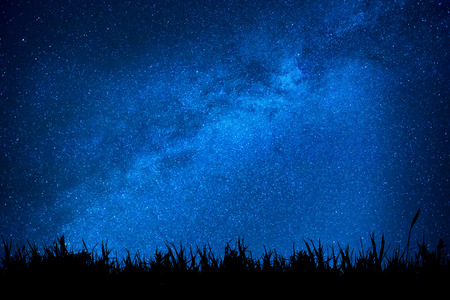 Blue dark night sky with many stars above field of grass. Milkyway cosmos background