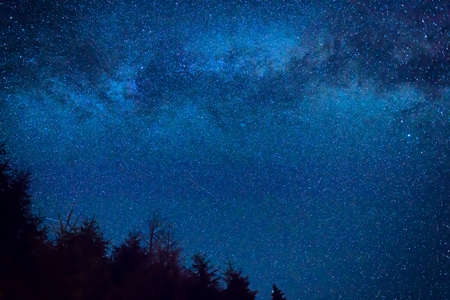Photo pour Forest and pine trees landscape under blue dark night sky with many stars, milky way cosmos background - image libre de droit
