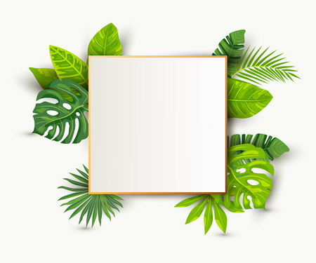 Illustration pour Green summer tropical background with exotic leaves, paper sheet wuth golden frame. Place for text. Vector illustration for poster, web, flyers, party invitation, sale, ecological concept, wedding. - image libre de droit