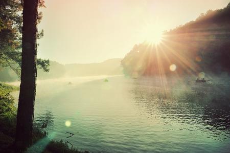 Foto de big swamp in the sunrise among mist - Imagen libre de derechos