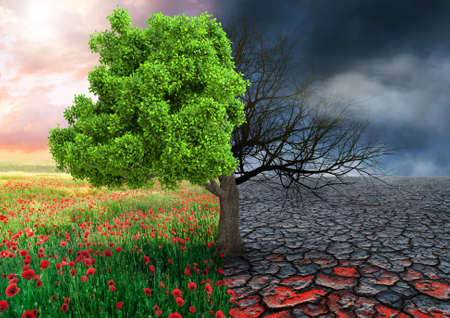 Foto de ecological concept with tree and climate changing landscape - Imagen libre de derechos