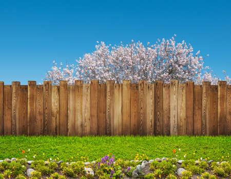 Foto de spring bloom tree in backyard and wooden garden fence - Imagen libre de derechos