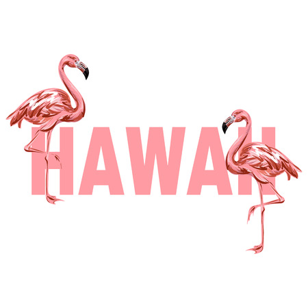 Hawaii. Vector colorful poster with hand drawn illustration of  flamingo isolated. Template for card, placard, banner, print for t-shirt, pin , badge and patch.