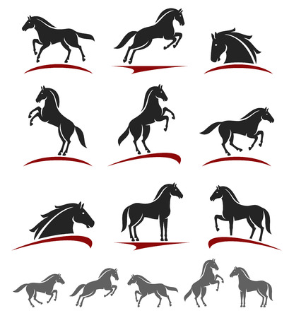 Horse set.