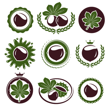 Chestnut labels and elements set. Vector