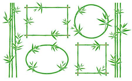 Bamboo frame collection set. Vector