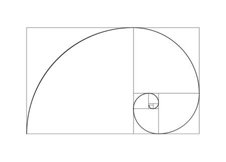 Illustration pour Golden ratio vector proportion spiral section. Fibonacci golden ratio geometry - image libre de droit