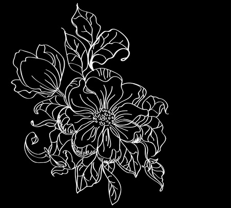 white flower over dark, beautiful illustration