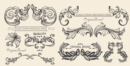 vector set  calligraphic design elements and page decoration, floral elements