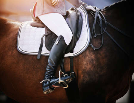 Photo pour On a Bay sports horse in a leather saddle sits a rider in black boots with spurs, holding the reins from the bridle. Horseback riding. Equestrian sport. - image libre de droit