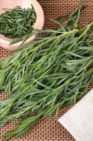 A bunch tarragon, used in cooking and medicine plants.