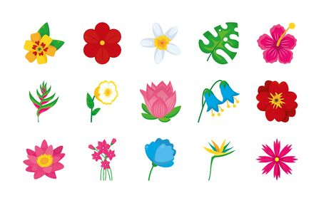 Illustration pour bird of paradise and colorful flowers icon set over white background, colorful design, illustration - image libre de droit